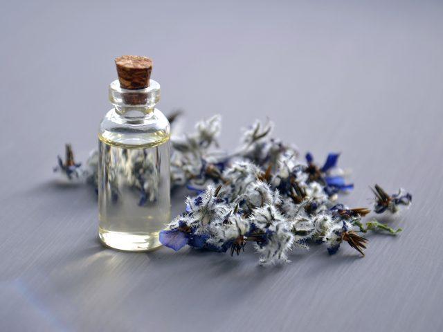 herbal medicine - lavender