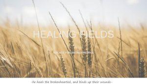 Healing Fields - A Place for Broken People